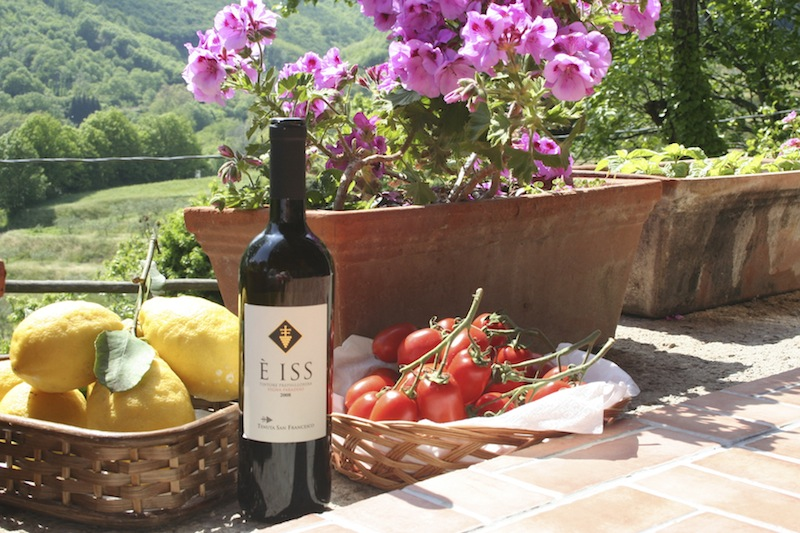 Wine bottle and lemons - Wines Compania - Delectable Destinations Culinary Tours - Carol Ketelson