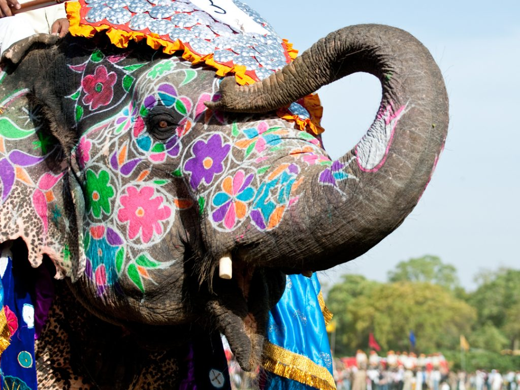 painted elephant India Carol Ketelson Delectable Destinations Culinary Tours
