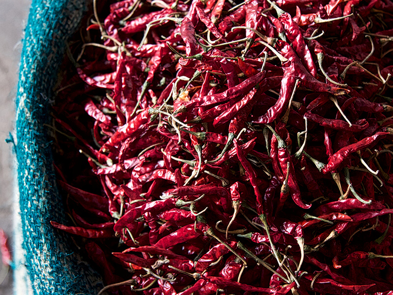 Chili Peppers at Market in Old Delhi India Carol Ketelson Delectable Destinations Culinary Tours