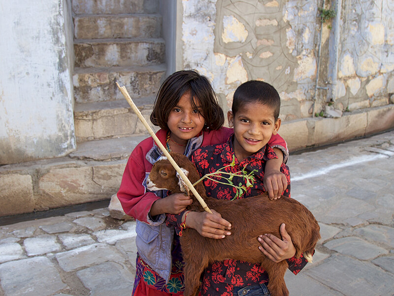 children with goat India Carol Ketelson Delectable Destinations Culinary Tours