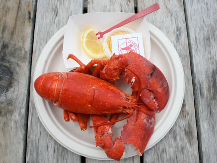 Delicious Lobster at the Clam Shack Kennebunkport Maine