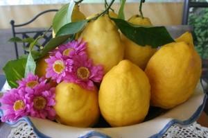 Bowl of lemons Ravello Beauty Adventure Amalfi Coast Italy Delectable Destinations Carol Ketelson