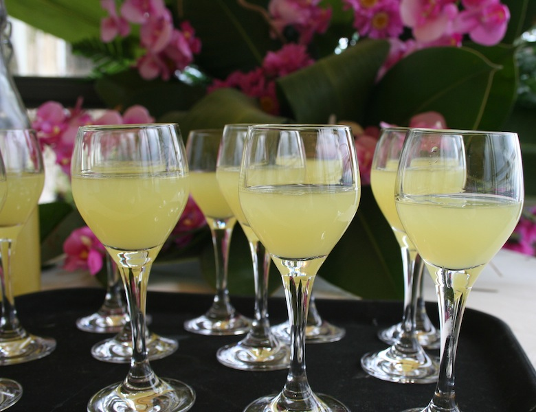 Tastings of Delicious Limoncello at Mamma Agata's Cooking School of the Amalfi Coast - Lemons lemon trees limoncello - Delectable Destinations Culinary Tours - Carol Ketelson