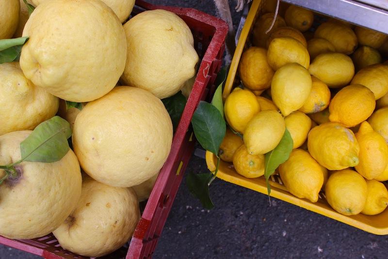 The Sfusato Amalfitano and Limone de Sorrento - Lemons lemon trees limoncello - Delectable Destinations Culinary Tours - Carol Ketelson