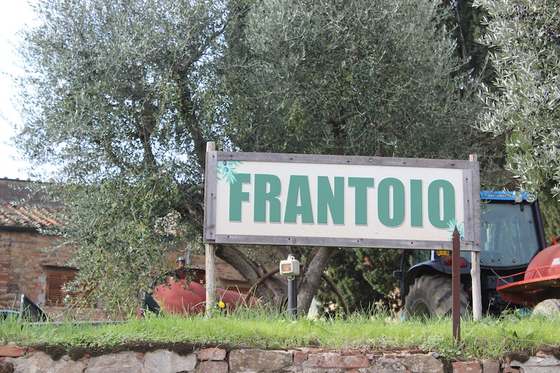 Frantoio, Impruneta, Italy - Olive Press - Tuscan Olive Oil Harvest - Delectable Destinations Culinary Tours - Delecatble Destinations