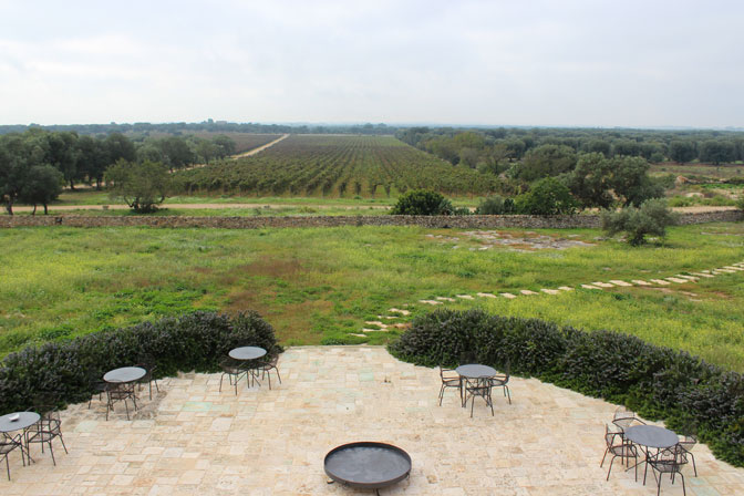 Imagine having breakfast with this view - acres of olive trees and vineyards - Discovering Puglia Luxury Travel - Delectable Destinations - Carol Ketelson