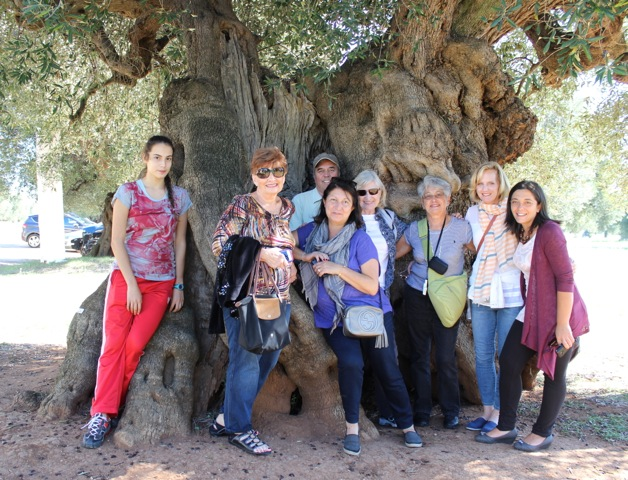 In front of anciant olive tree - Delectable Destinations Culinary Tour of Puglia - Carol Ketelson