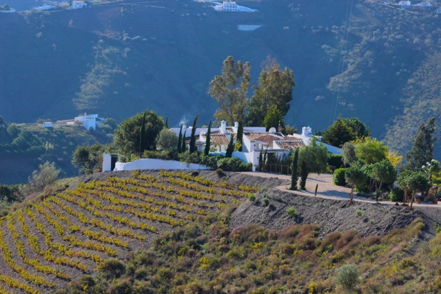 Heaven in the Andalucian Mountains - The Villas at El Carligto - Memories 2014 Culinary Tours - Delectable Destinations - Carol Ketelson